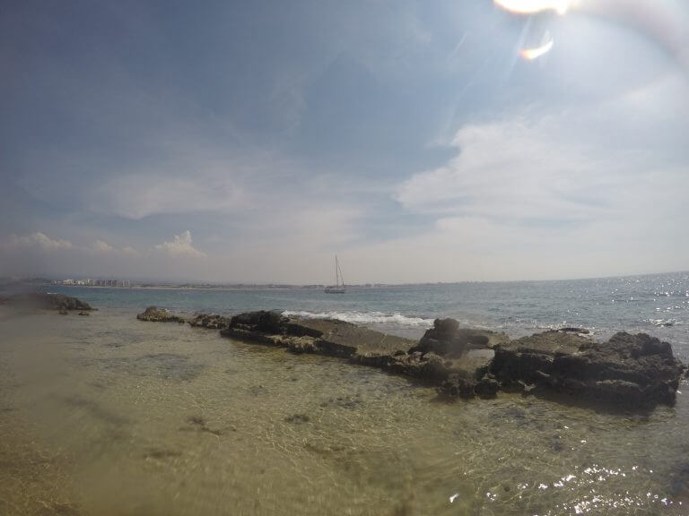 מיקי וינשטיין-קו החוף